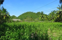 sipalay beach lot for sale