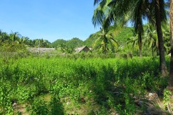 sipalay sugar beach lot for sale0_7136615919308912707_n