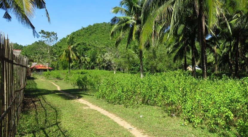 sipalay sugar beach lot for sale
