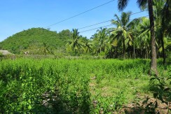 sipalay sugar beach lot for sale 2