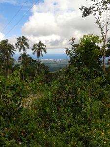 negros oriental land prices