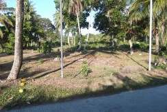 valencia negros oriental lots for sale