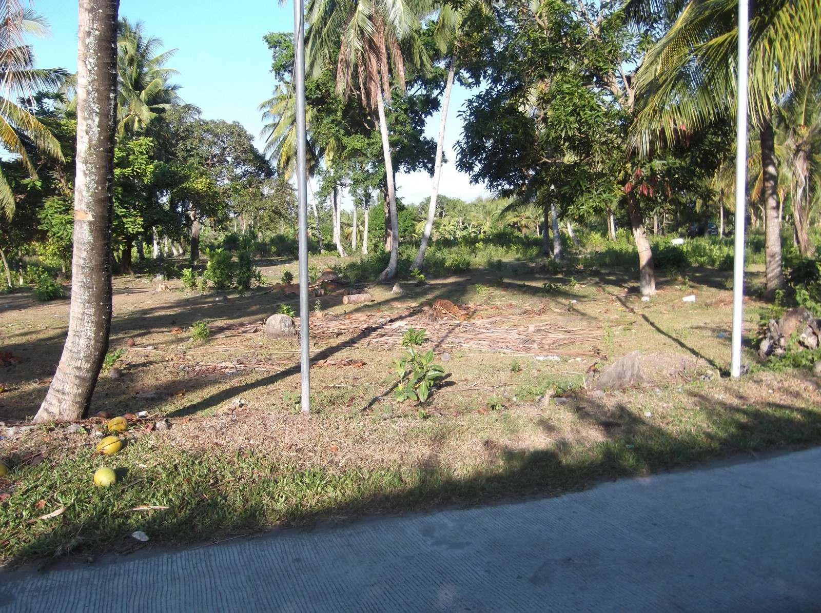 VALENCIA NEGROS ORIENTAL LOTS FOR SALE IN UPSCALE SUB-DIVISION