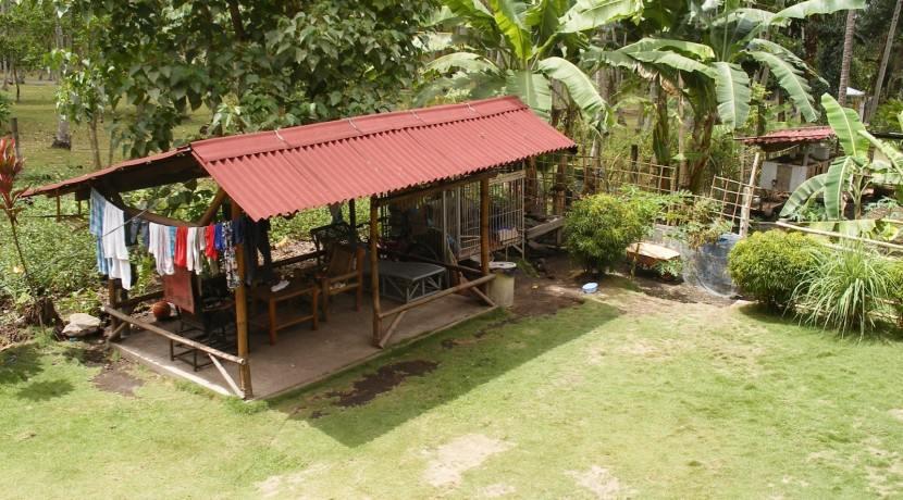 BBQ shelter