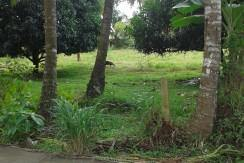 lot for sale in dumaguete city