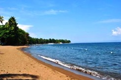dauin beach lots for sale