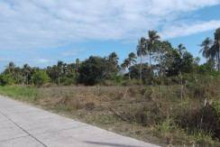 bacong farm land for sale near dumaguete city