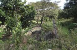 tierra alta property