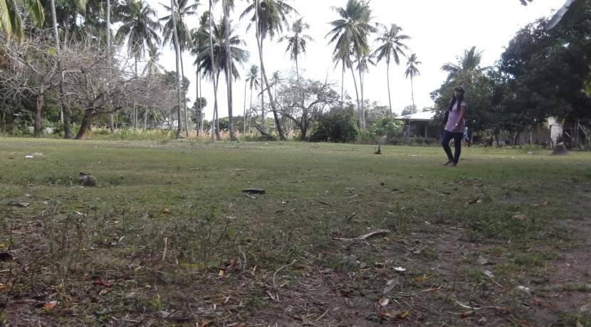 2000 sqm dauin lot for sale (11)