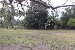 2000 sqm dauin lot for sale (16)