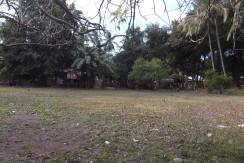 2000 sqm dauin lot for sale (18)
