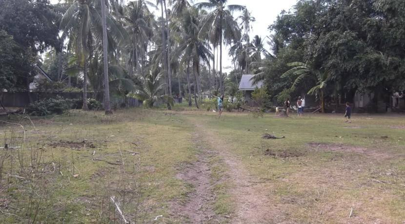2000 sqm dauin lot for sale (20)