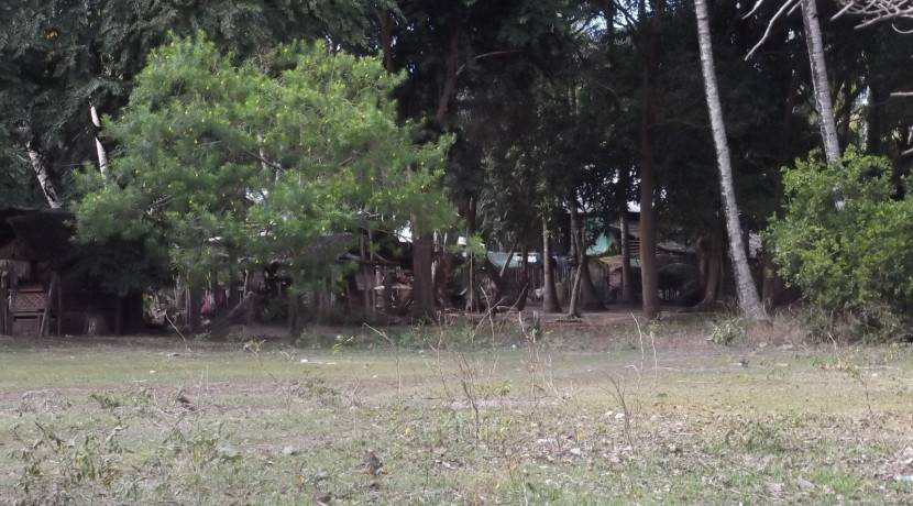 2000 sqm dauin lot for sale (22)
