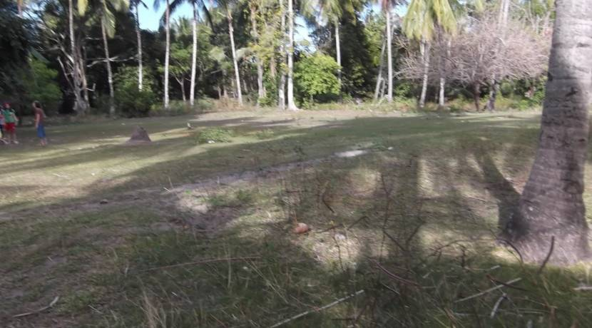 2000 sqm dauin lot for sale (24)