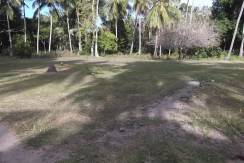 2000 sqm dauin lot for sale (5)