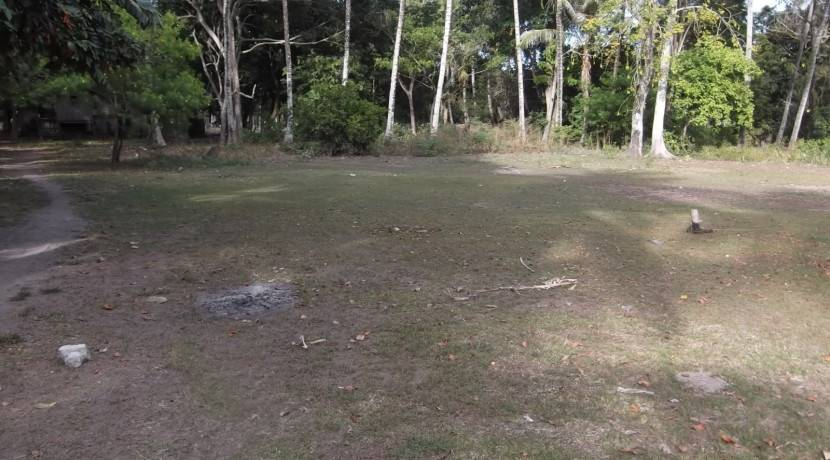 2000 sqm dauin lot for sale (7)