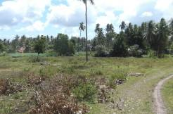 negros oriental valencia lot for sale