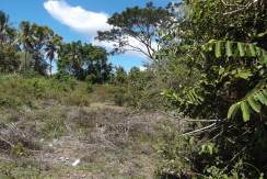 half hectare valencia lot for sale
