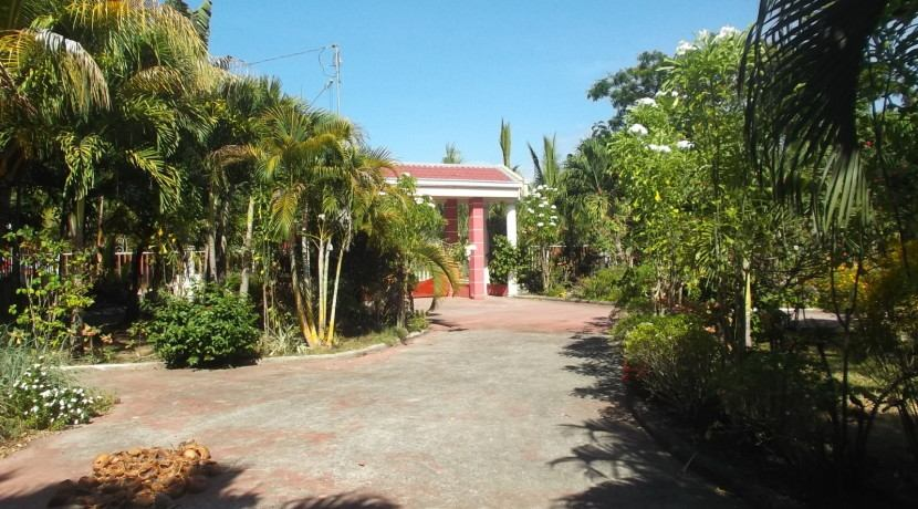 negros country mansion for sale (1)