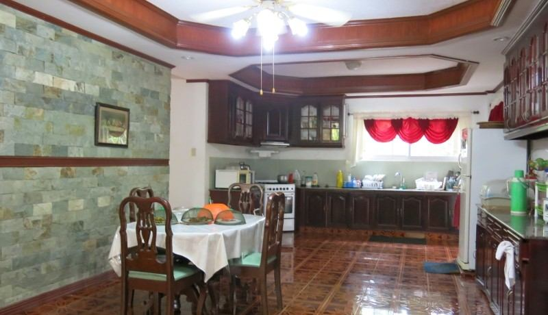 negros country mansion for sale (12)