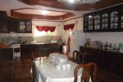 negros country mansion for sale (18)