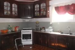 negros country mansion for sale (19)