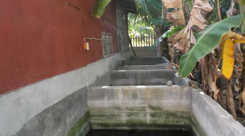 negros country mansion for sale (35)