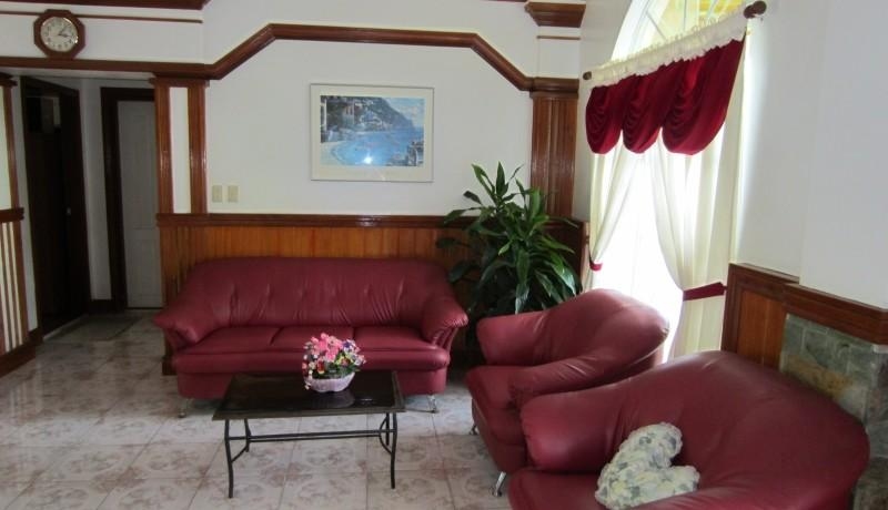 negros country mansion for sale (5)