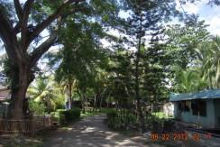 sibulan beach property for sale (5)