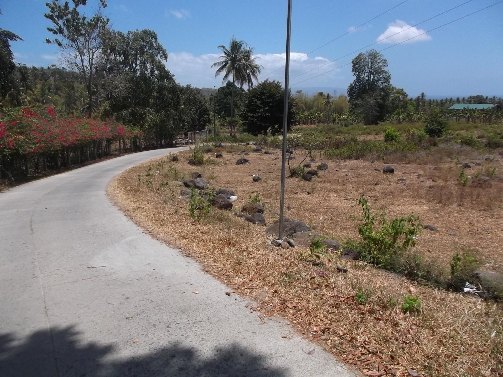 OCEAN VIEW VALENCIA LOT FOR SALE