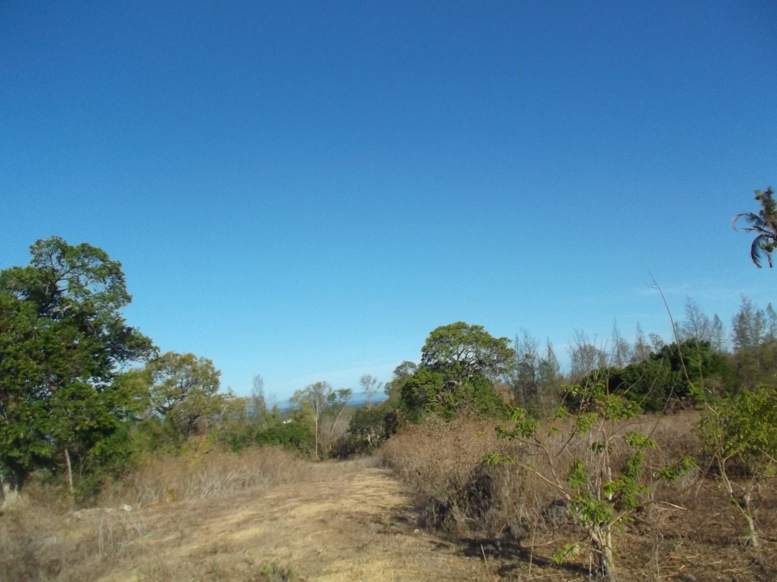 DEVELOPMENT LAND FOR SALE NEAR GOLF COURSE