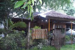 native house near the beach