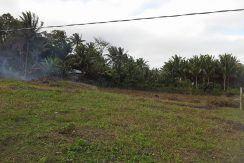 pig farm for sale (9)