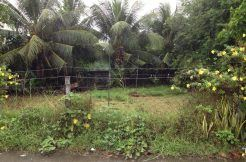 dumaguete subdivision lot for sale