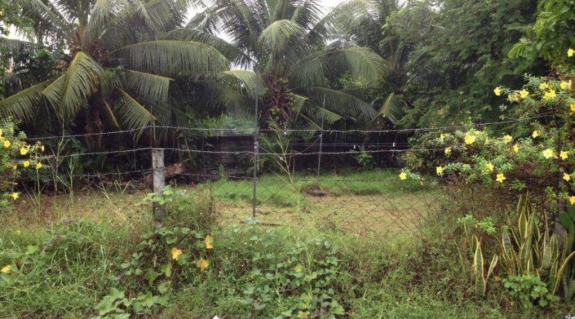 subdivision lot for sale (7)