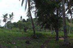 valencia development land for sale
