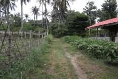 dauin-country-lot-for-sale-2