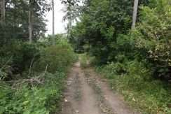 dauin-country-lot-for-sale-22