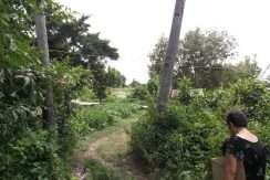 dauin-country-lot-for-sale-24