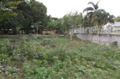 dauin lot for sale with beach access