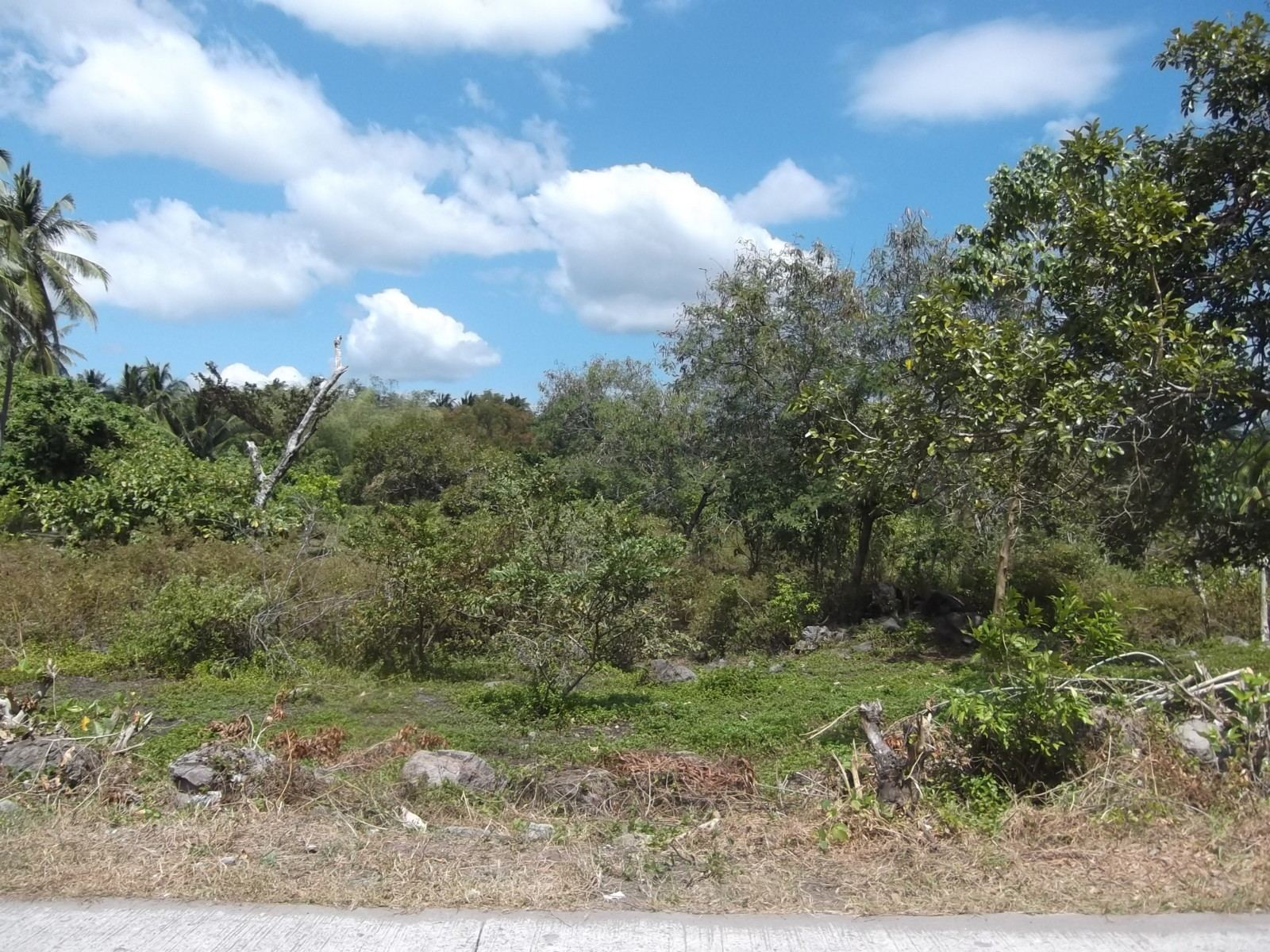AFFORDABLE LOTS FOR SALE IN BACONG
