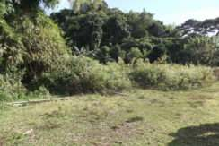 tambobo bay land for sale