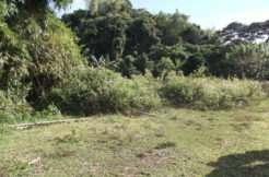 tambobo bay land for sale