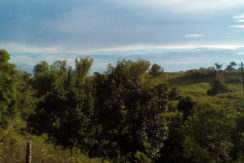 zamboanguita ocean view property