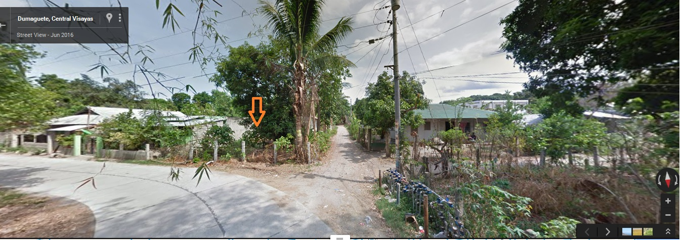 DUMAGUETE CITY LOT FOR SALE AT GOOD PRICE