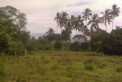 valencia negros lot for sale with view