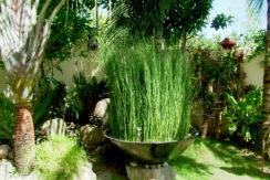 040_Main Garden Veranda
