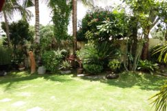 044C_Designer Landscaper Main Garden