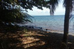 dauin beach lot for sale