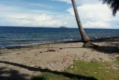 beach lot for sale in dauin negros oriental